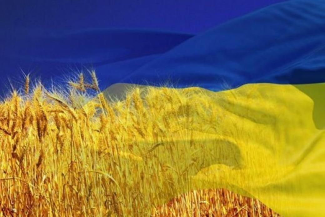 фото возобновление туров на Украину