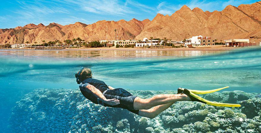 фото Египет вводит тесты